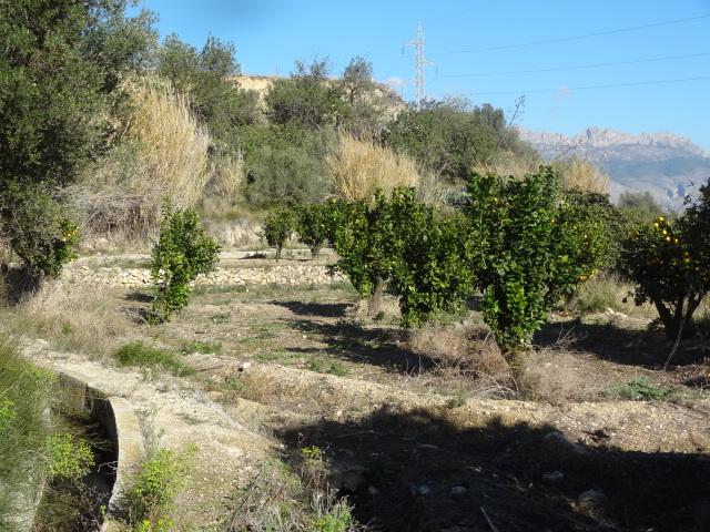 vistas del Terreno en La Nucía